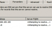 Configure DNS Forwarder