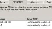 Configure DNS Forwarder