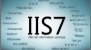 Install Internet Information Services (IIS)